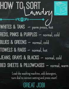 Also the laundry printable doesn   tell your kids how to put in detergent and start up washing machine  just spent  couple of days with my free sort chart rh thepurposefulmom