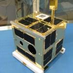 A BRITE microsatellite