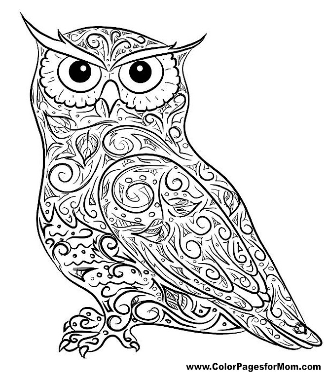 Complex Coloring Pages for 10- to 12-Year-Old Girls. Print Them ... | 774x663