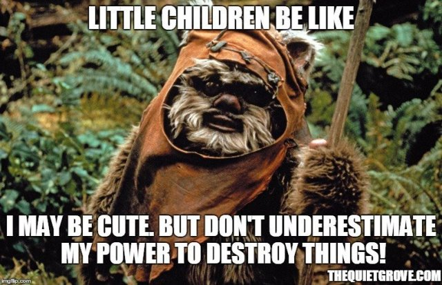 20+ Epic Star Wars Themed Parenting Memes to Celebrate Star Wars Day!