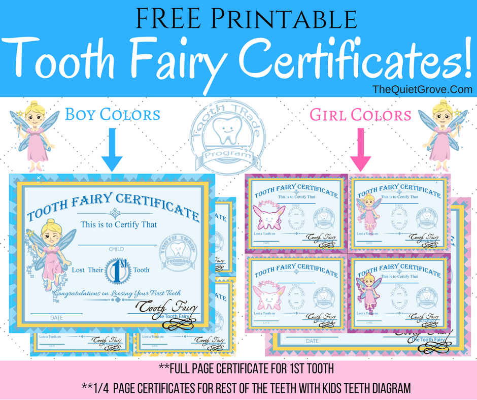 image about Printable Tooth Fairy Letter called Totally free Printable Enamel Fairy Certificates ⋆ The Calm Grove
