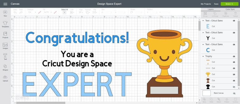 How Well Do You Know Cricut's Design Space? ⋆ The Quiet Grove