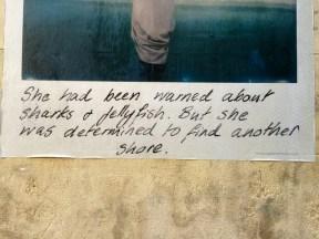 Lei era stata avvertita degli squali e delle meduse. Ma era determinata a trovare un'altra spiaggia.