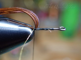 Pull your pheasant tail back and take a wrap or two.
