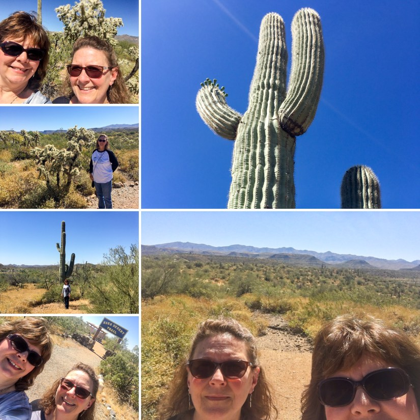 Two friends take photos of large cactus at a road side hiking trail in Arizona