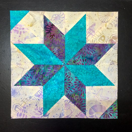 Block made using Deb Tucker Rulers for Certified Instructor Training