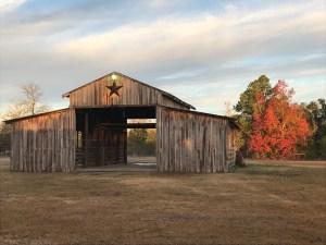 fall trees and Texas barn