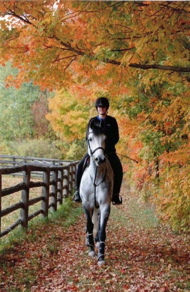 horseback-riding-for-fall