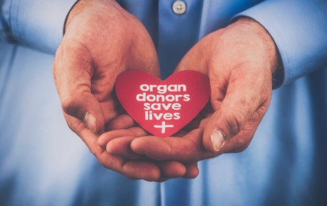 Viewpoint: Why Everyone Should Be An Organ Donor