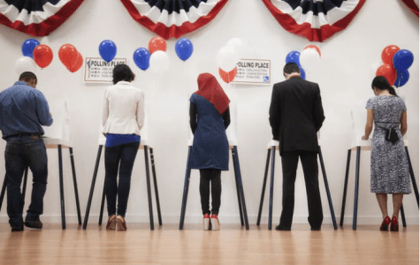 Viewpoint: Why voting in the midterm elections matter