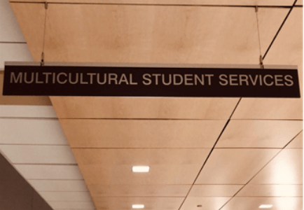 The rise and fall of attendance in multicultural student organizations