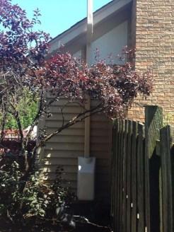 White Fan Housing - Strategic Placement