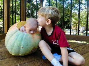 This pumpkin was so big, Kellan could fit in it!