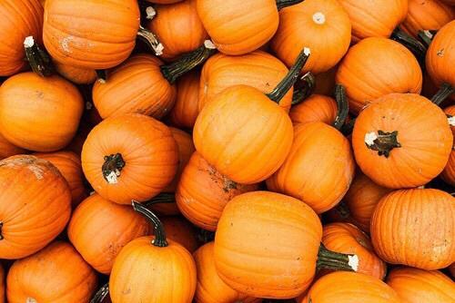 Taste of Halloween Party