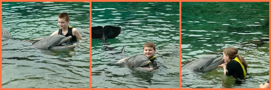 tRR Dolphin collage with kids