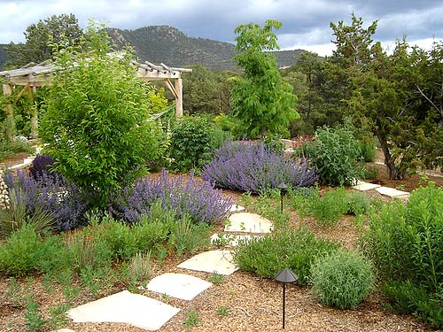 landscaping & xeriscaping