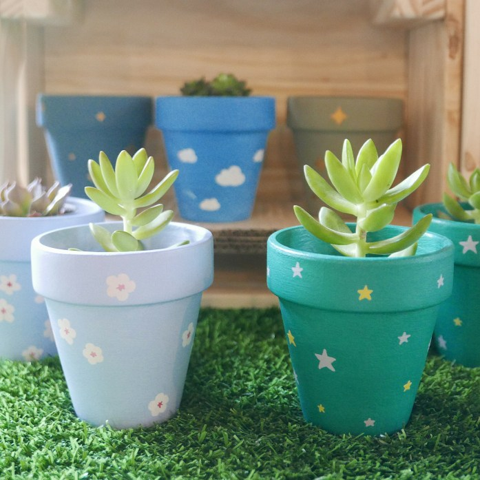 Two small succulents in Hanami and Josan pots
