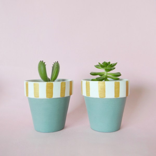Candy Cane (duck egg blue)