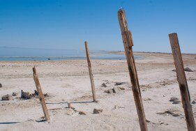Posts sticking out of the sands surrounding Salton Sea Beach stand tall.