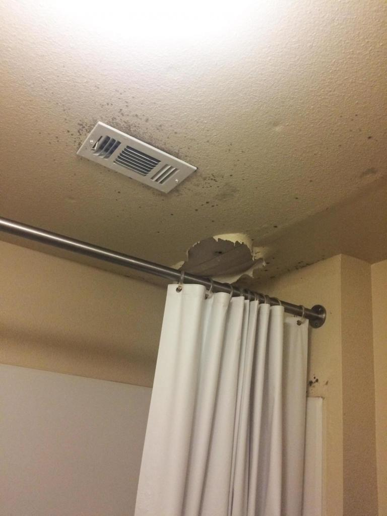 Photo courtesy of Laura Brunden. Mold forms around damaged ceiling in the West Village apartments.