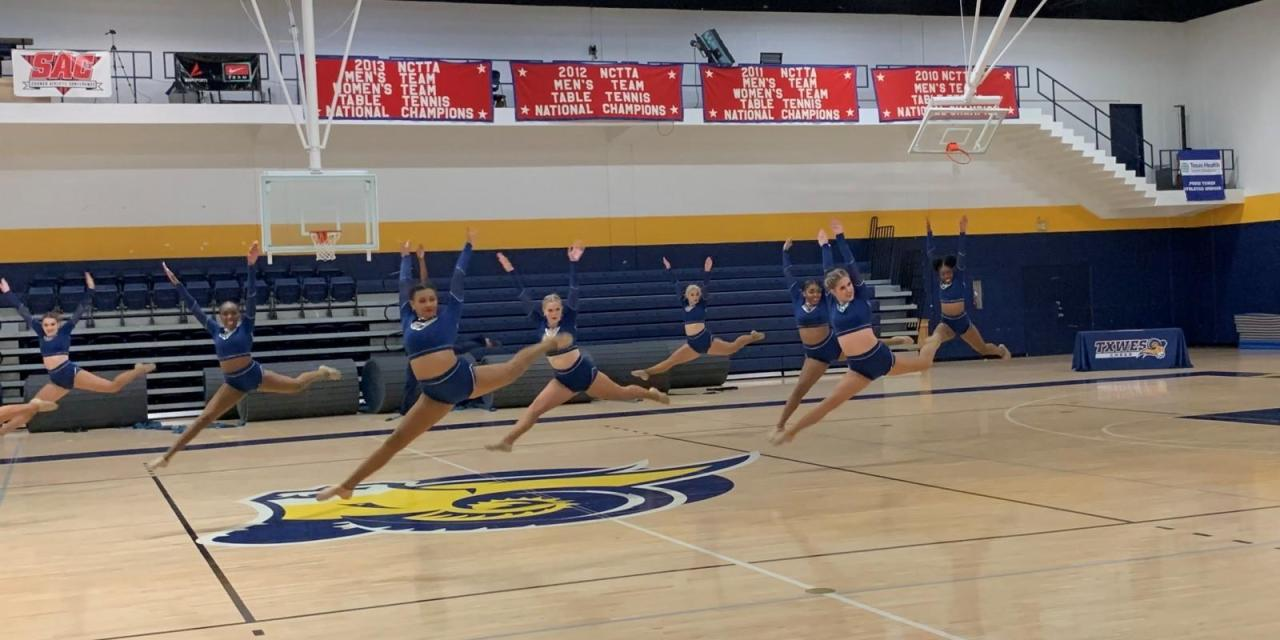 Gold Line Dancers and cheer team host their second annual showcase