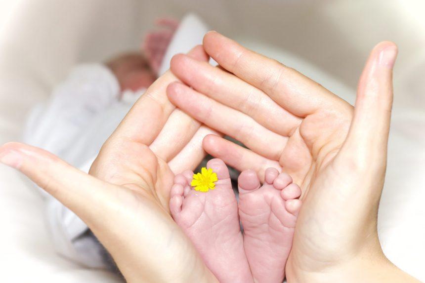 """Kindermachen und Schwangerwerden: Das Wunschbaby durch künstliche Befruchtung und das """"Social Freezing"""""""