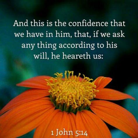 John 514