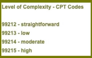 E/M CPT Codes