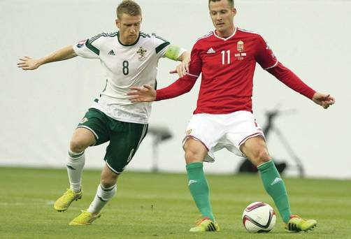 Hungary's Daniel Tozser is a mainstay in Watford's midfield