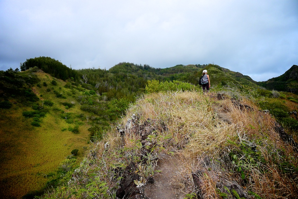 kamilo iki, hiking hawaii, koolau summit trail, waimanalo, oahu east shore