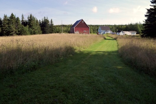 Cape Breton, Judique, Old Farm, Red Barn, Old Barn