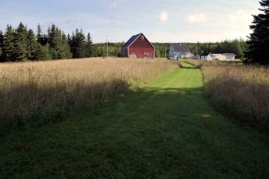 Cape Breton, Judique, Old Farm, Red Barn, Old Barn