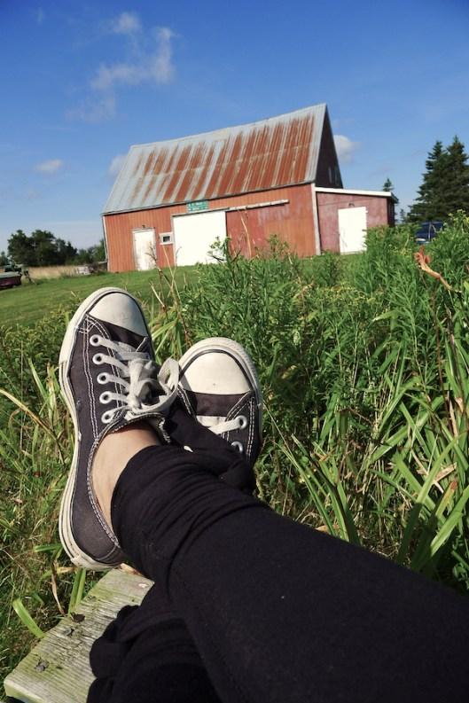 Cape Breton, Judique, Old Farm, Red Barn, Old Barn, Footshot