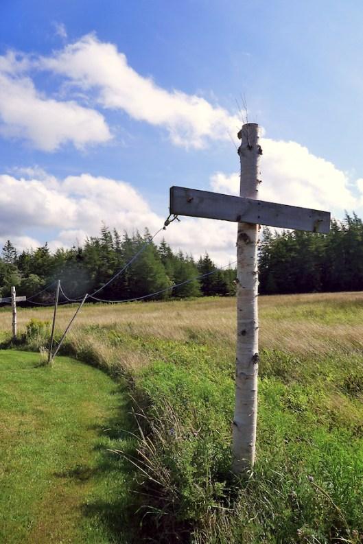 Cape Breton, Judique, Old Farm, Meadow, Clothesline
