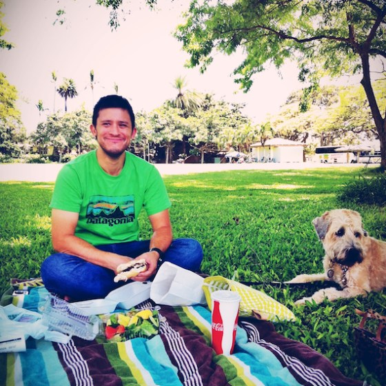 Day in the Life, thereafterish, Hawaii Life, Birfday, Wheaten Terrier