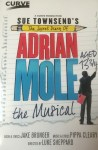 Adrian Mole the Musical