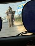 Rush hour in Varanasi