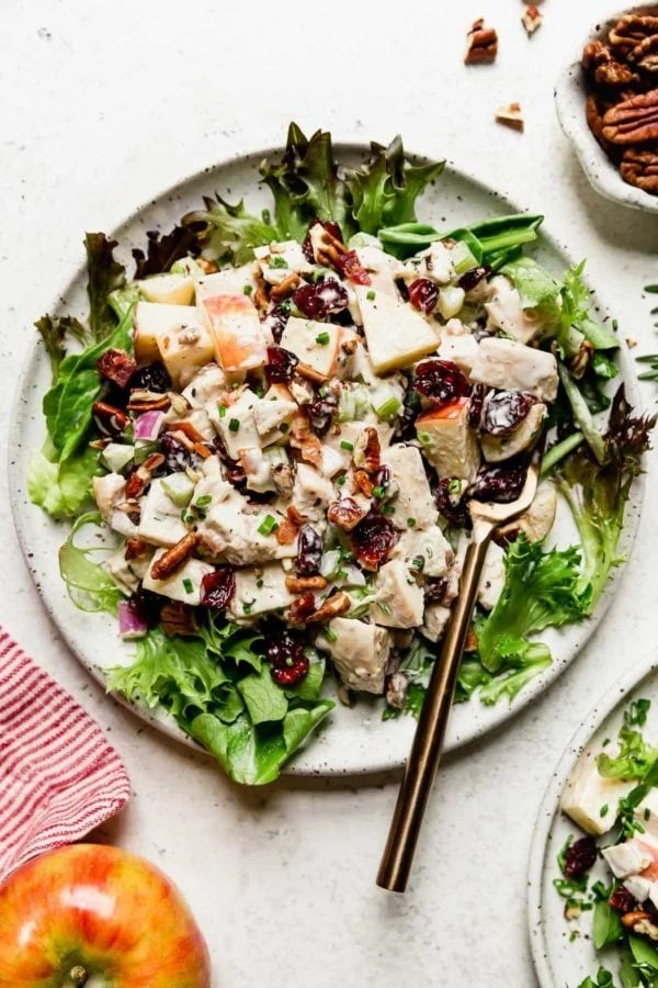 Cranberry Chicken Salad with Apples on a white plate served over a bed of greens with a gold fork.
