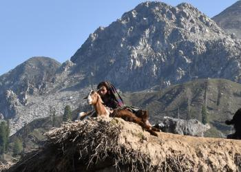 Culture and Tourism   In the shade of mountains and under the sun!