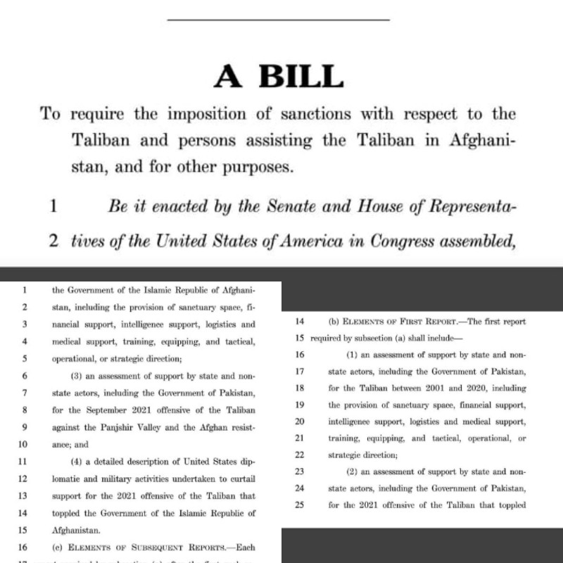 The bill that seeks to sanction Afghan Taliban and Pakistan.
