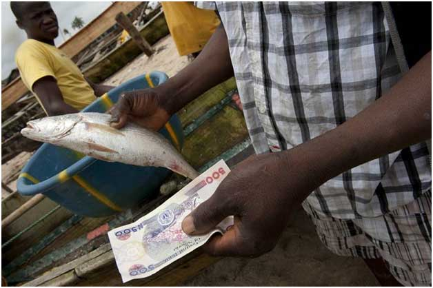 Fishing trade in the village of Orimedu, Lagos State, Nigeria. Credit: Arne Hoel/World Bank