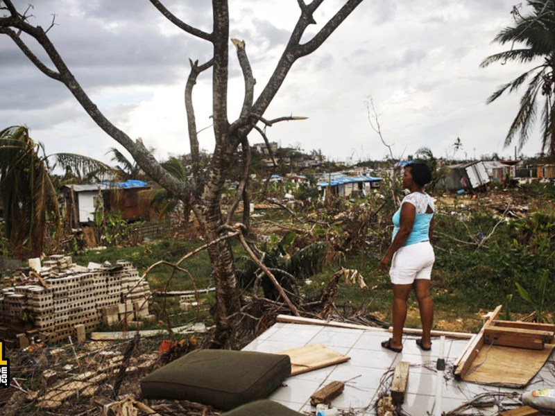 Climate Crisis: Black Lives Matter, Looting Puerto Rico, and California's Environmental Racism