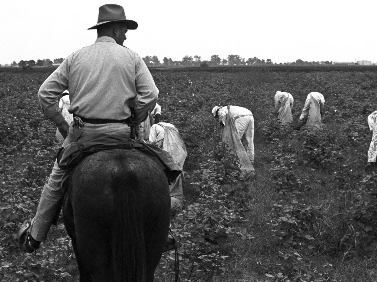 Prison guard high rider overseeing African American field labor