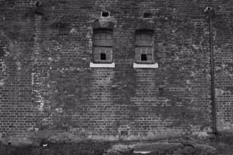 Window. John Callaway [2016]