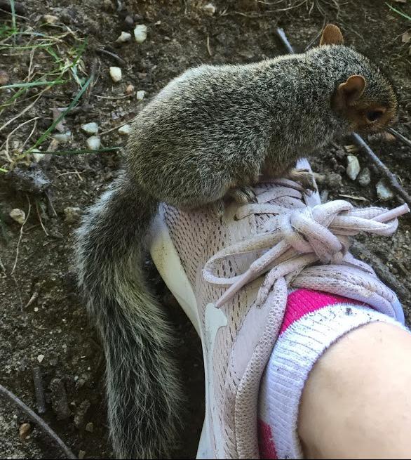 winston on foot