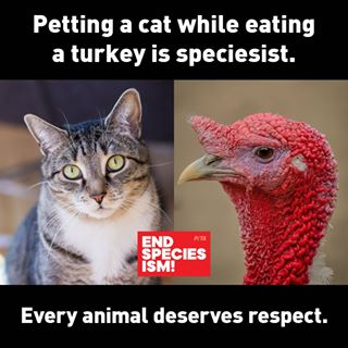 End Speciesism