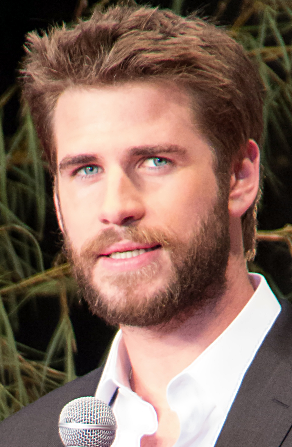 Liam_Hemsworth_June_2016