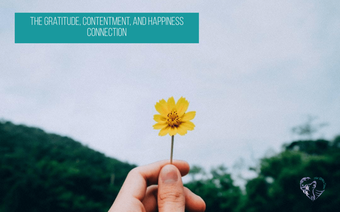 The Gratitude, Contentment, and Happiness Connection