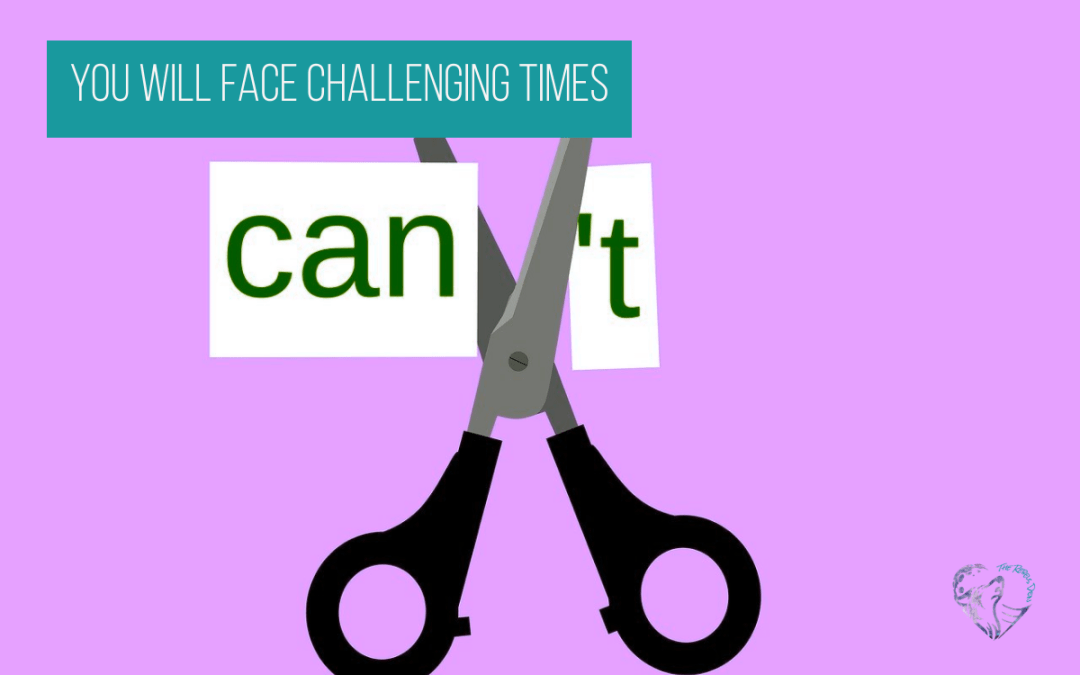 You WILL Face Challenging Times