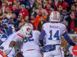 Rebels defend a Marshall pass